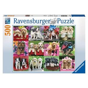 "Ravensburger (14659) - Keith Kimberlin: ""Puppy Pals"" - 500 pièces"