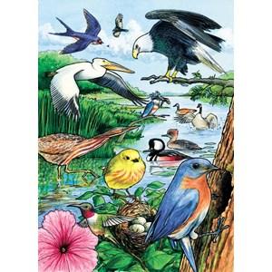 "Cobble Hill (58809) - ""North American Birds"" - 35 pièces"