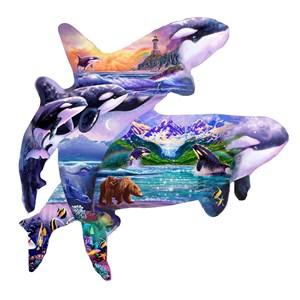 "SunsOut (96186) - Steve Sundram: ""Orca Habitat"" - 1000 pièces"
