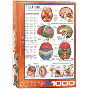 """Eurographics (6000-0256) - """"Le cerveau"""" - 1000 pièces"""
