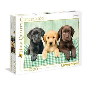 "Clementoni (39279) - Greg Cuddiford: ""Trois Labradors"" - 1000 pièces"